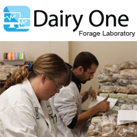 Dairy One Forage App